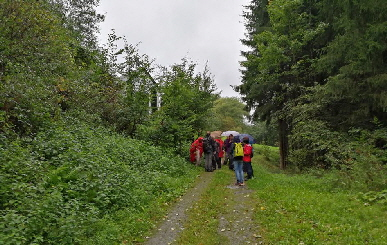 Wetter Düngenheim